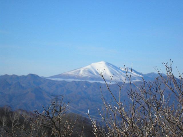 掃部ヶ岳山頂付近からの浅間山