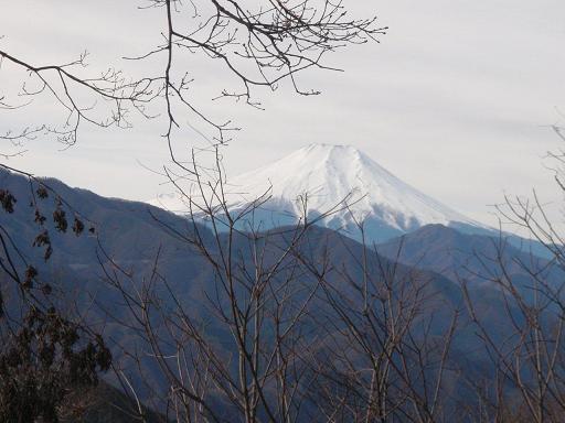 倉岳山山頂からの富士山