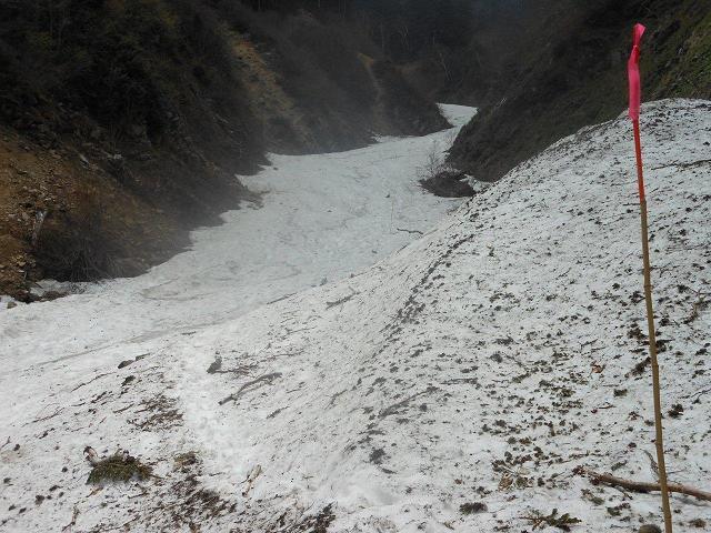 雪渓上のコースを示す目印の竹竿