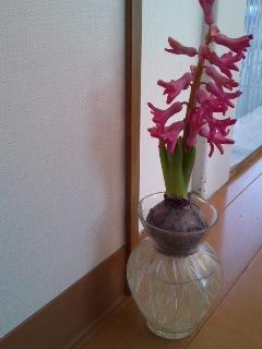 mini_130109_1621.jpg