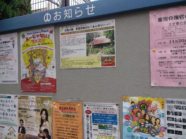 2014_11_16_6.jpg