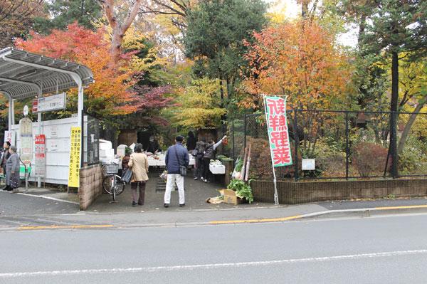 2014_11_30_19.jpg