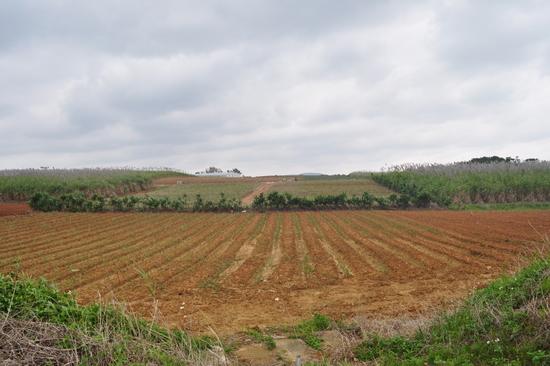 2011123005.jpg