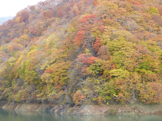 なかの湖の紅葉