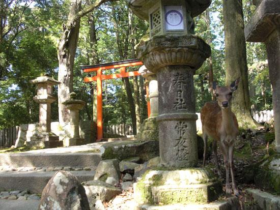 壷神神社01