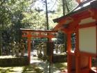 壷神神社08