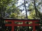 壷神神社11