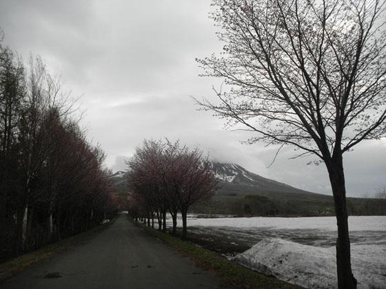 岩木山神社②25