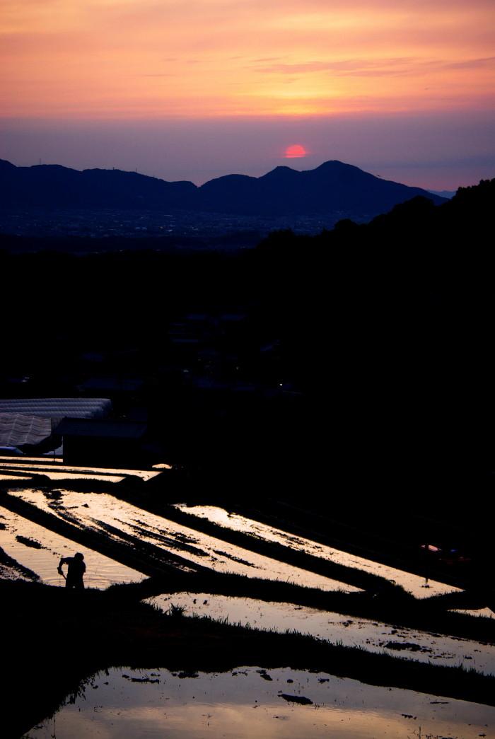 棚田の夕日 畦を造る人1_2