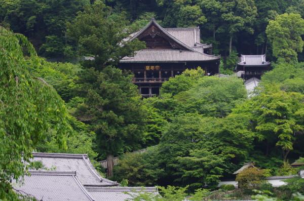 長谷寺 遠望