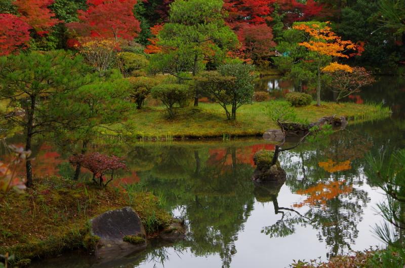 庭 園成寺 紅葉3
