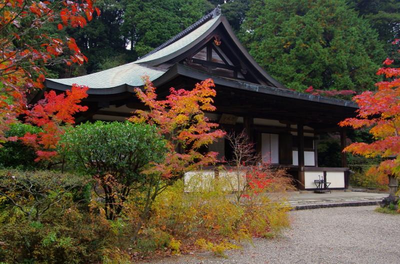 園成寺 本堂