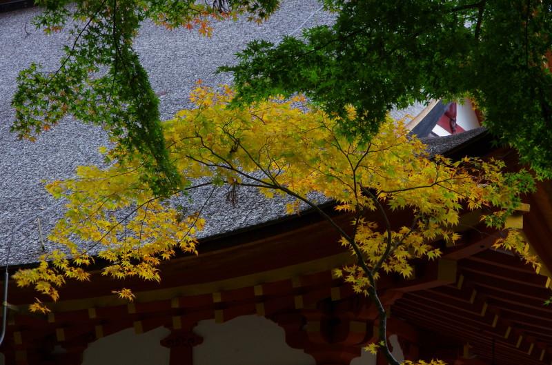談山神社 紅葉1