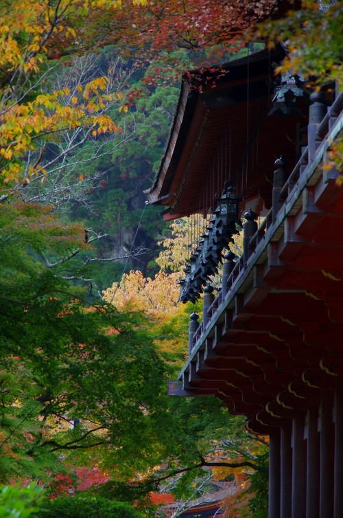 談山神社 本殿紅葉3