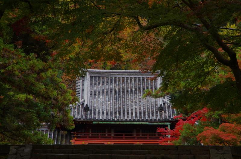 手向山神社 本殿