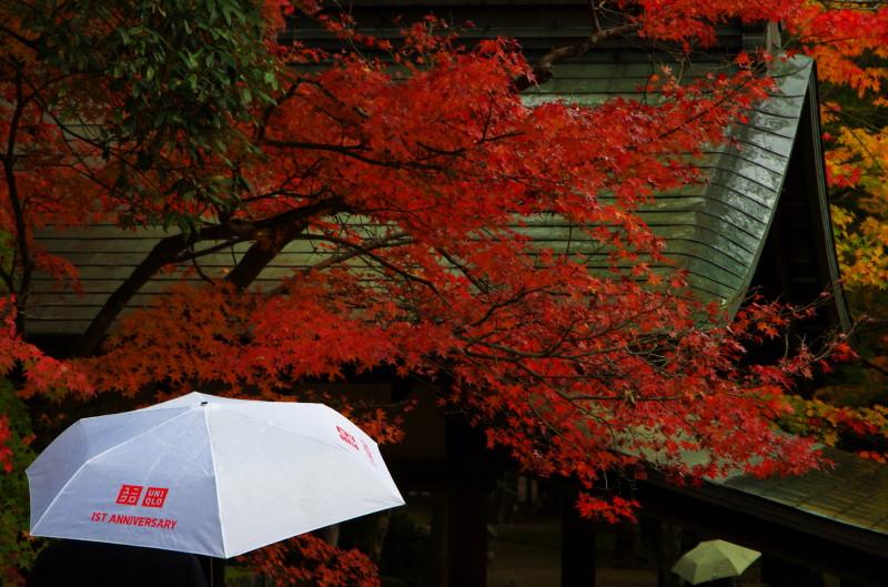 手向山神社 傘