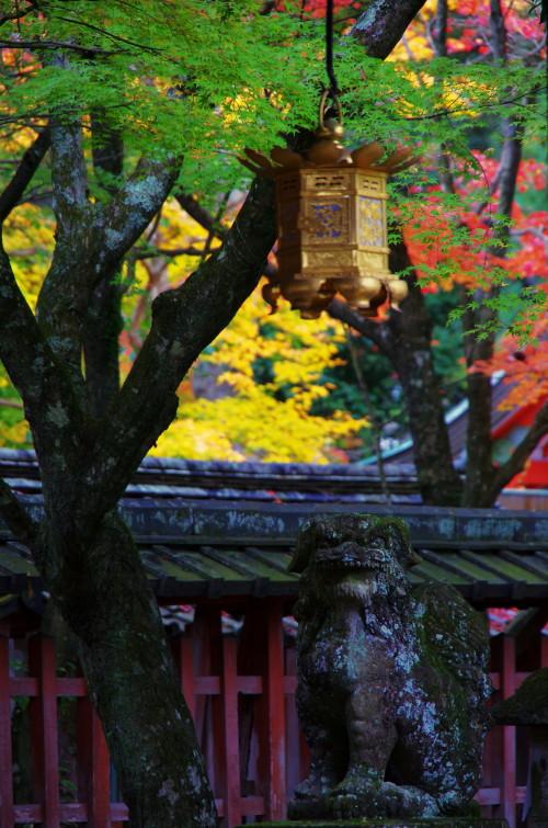 手向山神社 狛犬_1