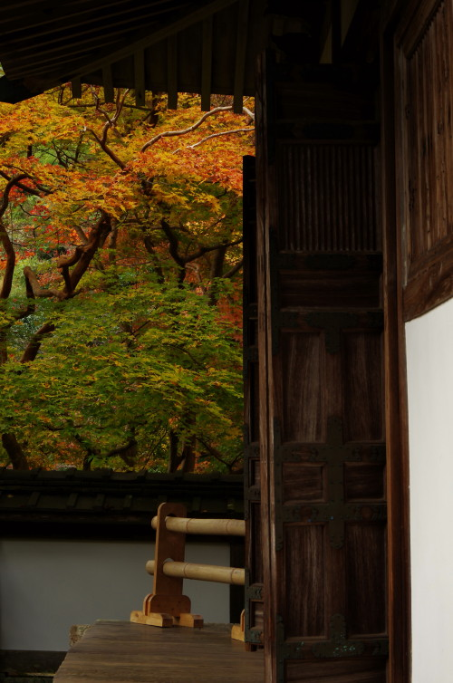 福寿院客殿3
