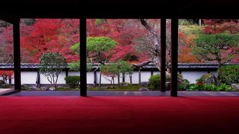 福寿院2011晩秋