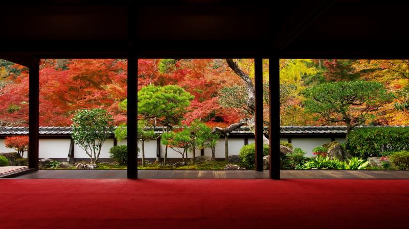 福寿院 2012
