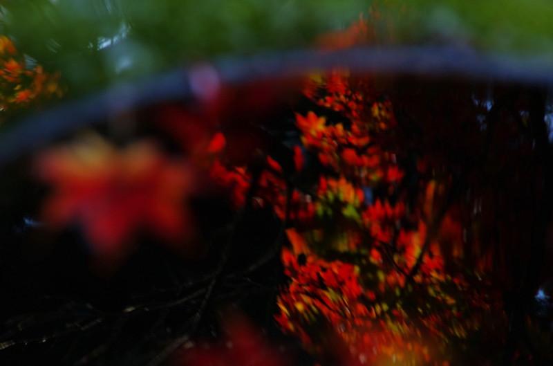 高鴨神社 天水石桶6