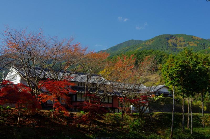 高鴨神社から 葛城山
