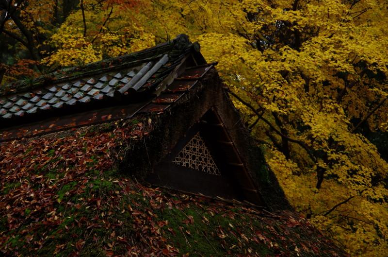 水谷茶屋 屋根
