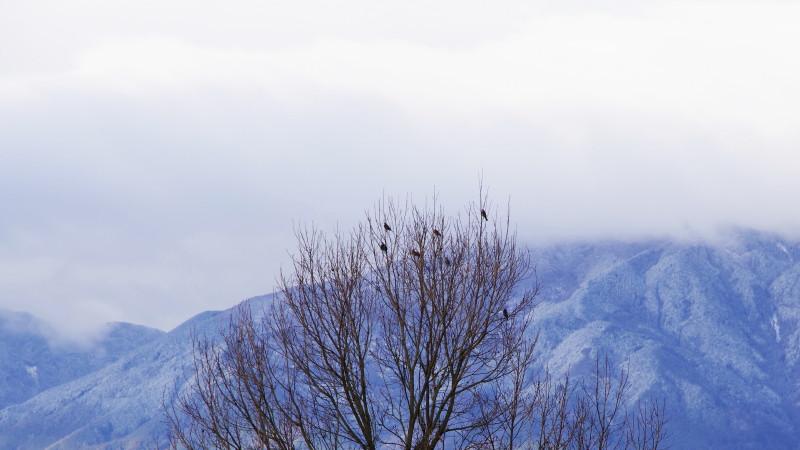 雪の葛城山系