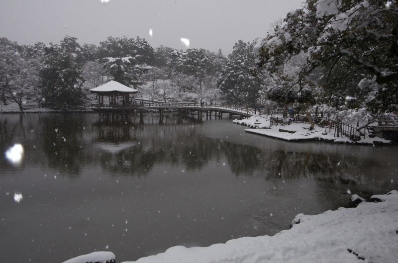 奈良公園 浮見堂0
