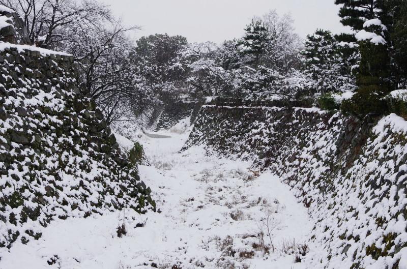 郡山城 堀の雪