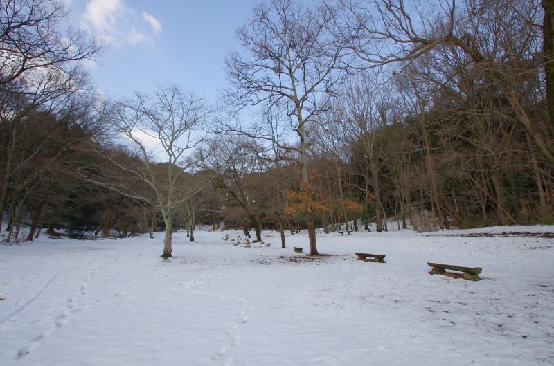 甘樫丘 雪