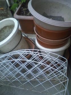 8-24植木鉢