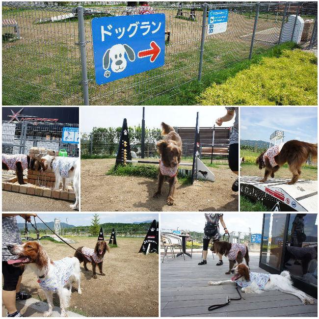 コピー ~ 2012-07-10 新東名