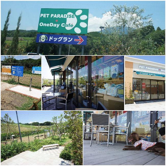 コピー ~ 2012-07-10 新東名1