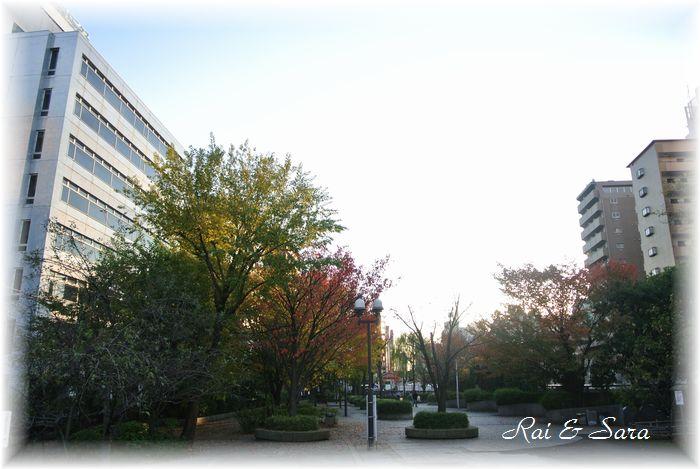 2012.11.27