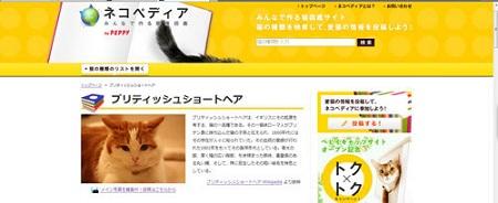 blog_import_5030c61c9d824.jpg