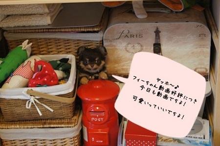 blog_import_5030cc736d3ec.jpg