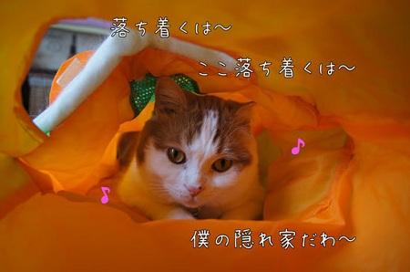 blog_import_5030ccd013fa2.jpg
