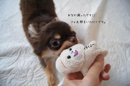 blog_import_5030cd74ccd94.jpg