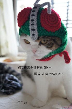 blog_import_5030cd81e5212.jpg