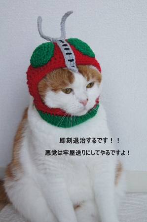 blog_import_5030cd82bf75b.jpg