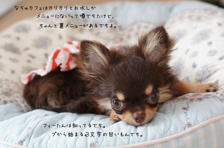 blog_import_5030cdd0c5c75.jpg
