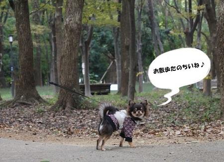blog_import_5030cfcf502b6.jpg