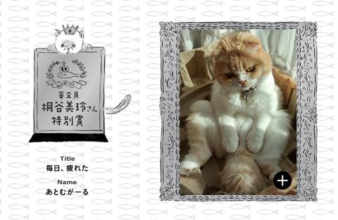 busakawa2_112514