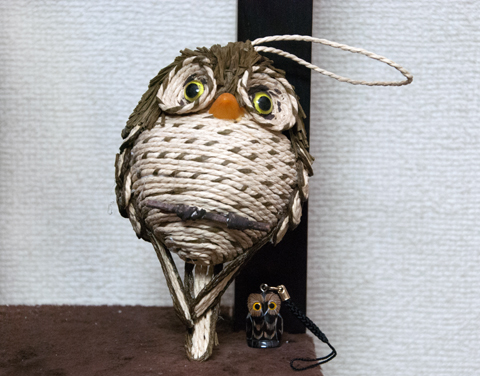 owl1_120314