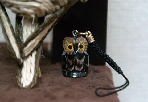 owl2_120314