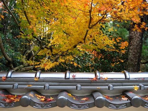 井山宝福寺 20121125