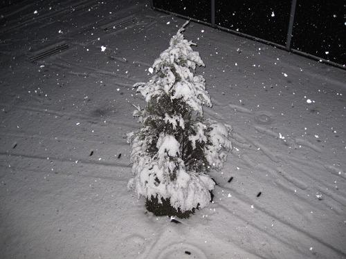 倉敷大雪 2014020800