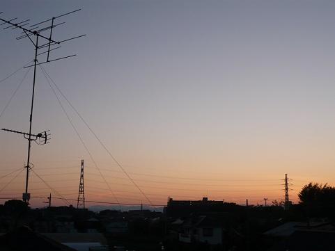 P1020831.jpg