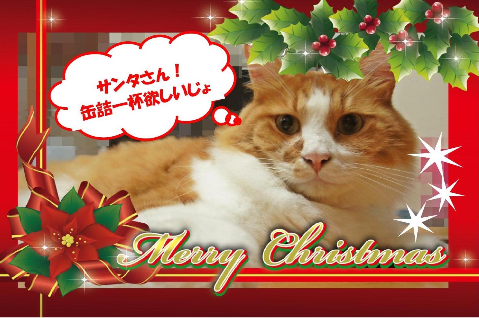 ひ クリスマスカード